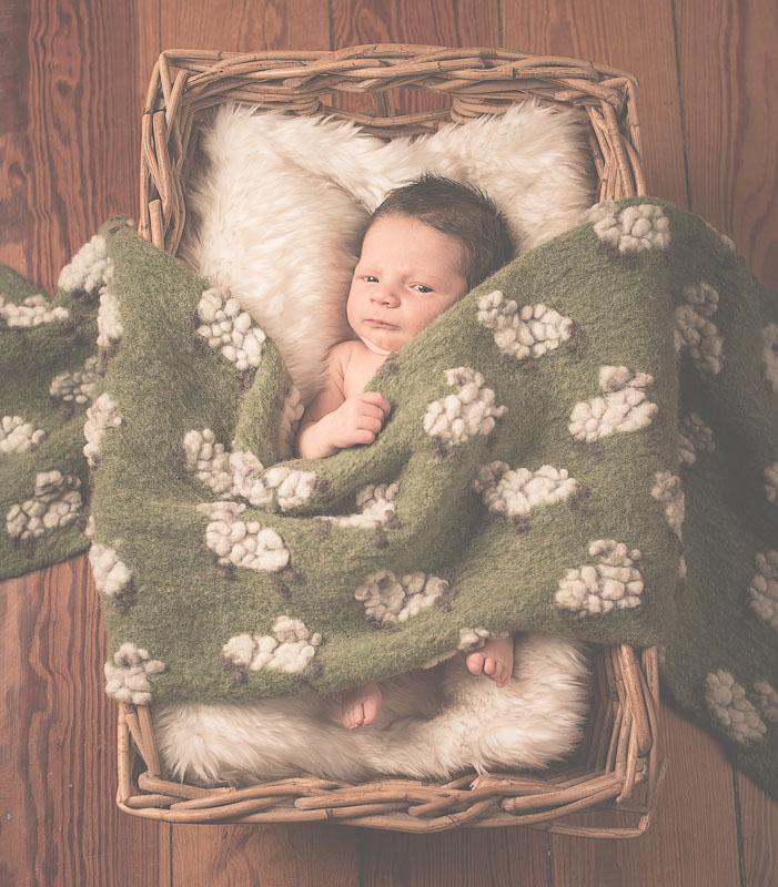 NeugeborenenFotografieBraunschweigDoelger9