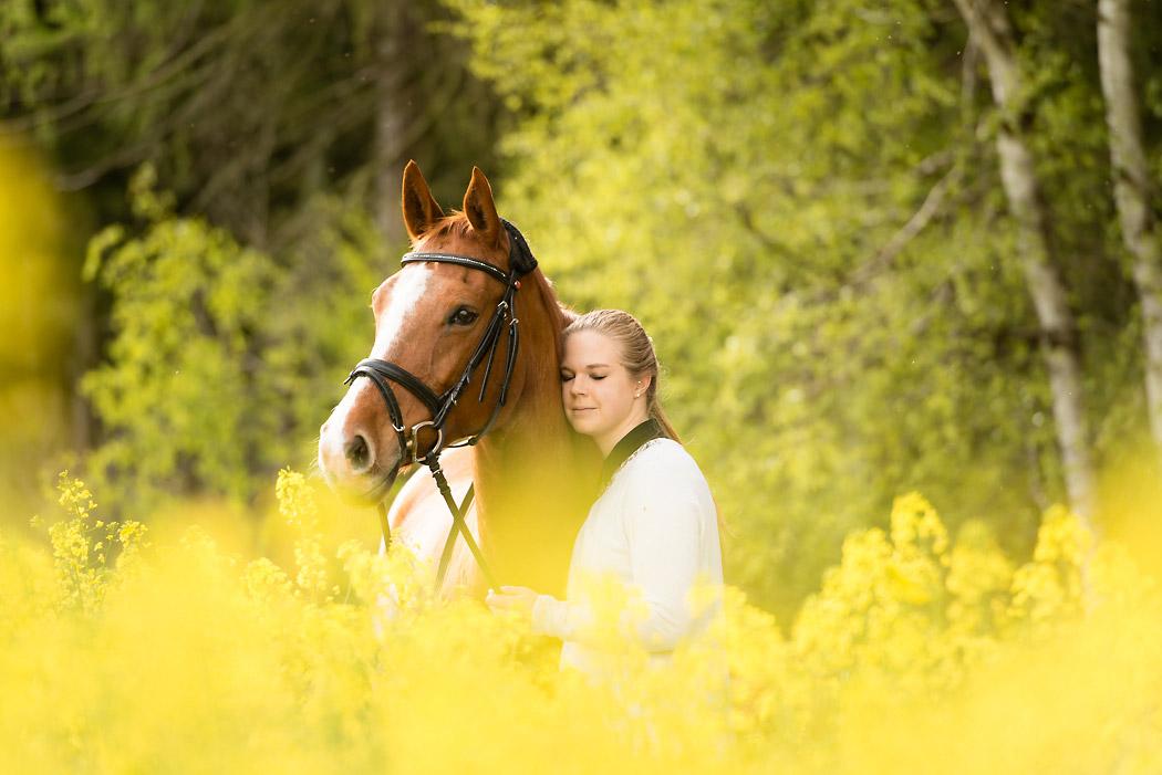 Braunschweig-Fotograf-Pferd