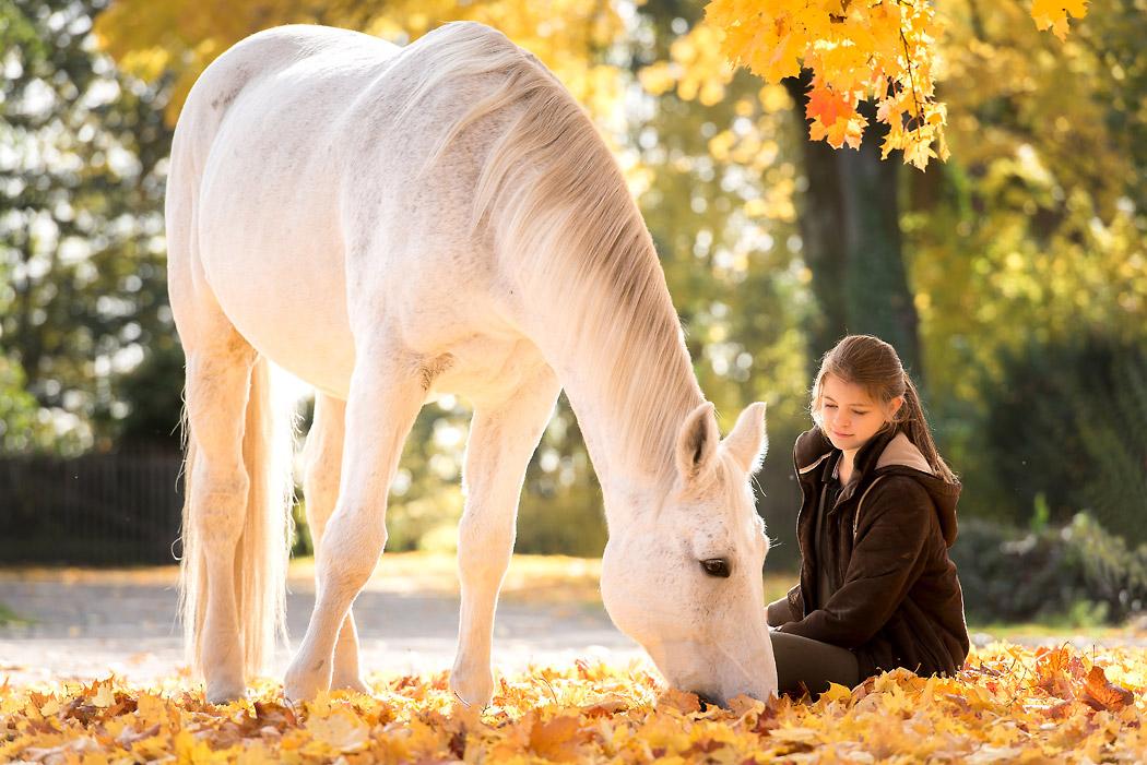 Braunschweig-Fotografin-Pferd