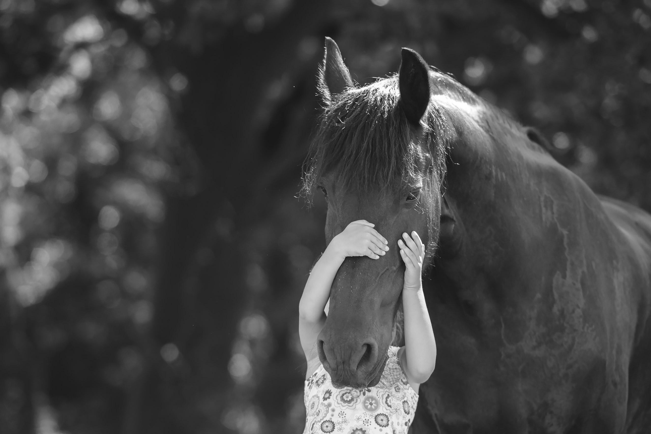Familienfotografie-Gifhorn-Pferd-Maedchen