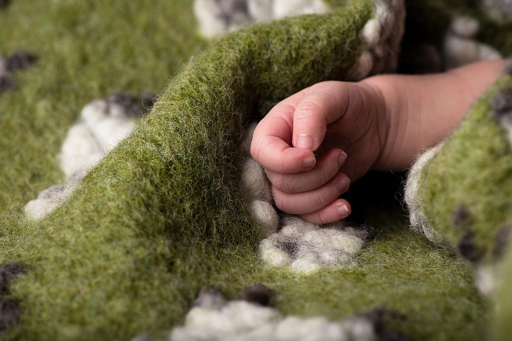 Fotograf-Braunschweig-Newbornfotografie