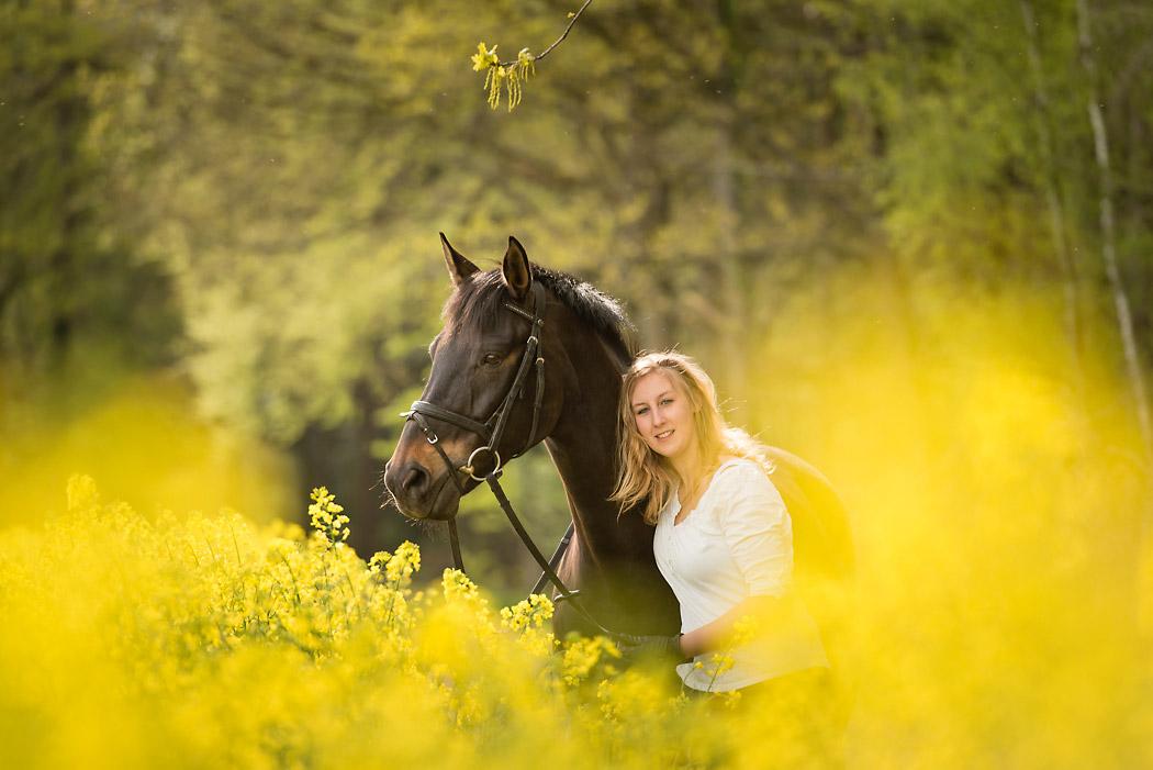 Gifhorn-Pferdefotografie