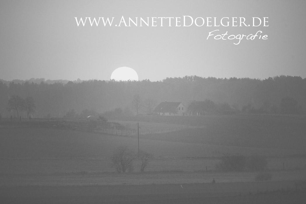 Sonnenuntergang bei Heiligendorf gesehen von Barnstof kommend