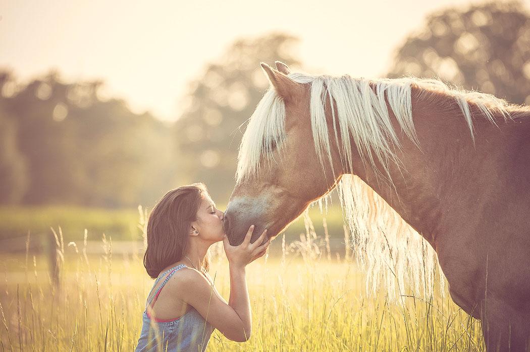 Single frauen mit pferd über 90 Zitate Singleleben Liebe Kann Frau Esse Out Stehlen Pferde ...