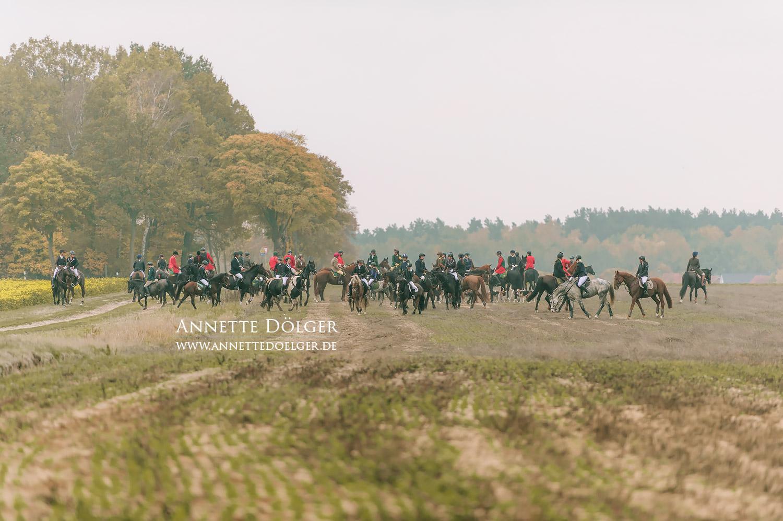 Schleppjagd-Warxbuettel-Niedersachsenmeute--2018-73