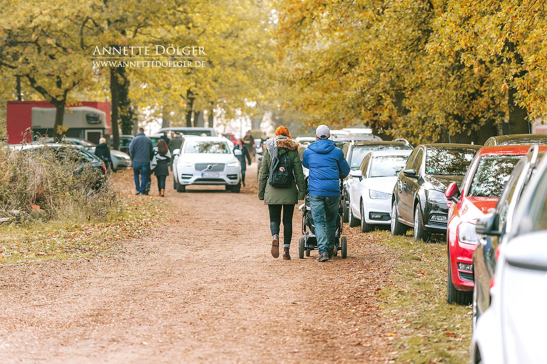 Schleppjagd-Warxbuettel-Niedersachsenmeute--2018-8