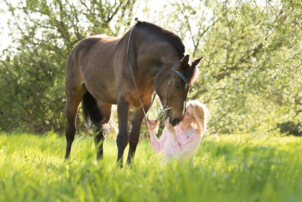 Wolfenbuettel-Fotograf-Pferd